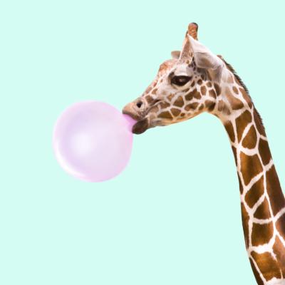 Edgee agence événementielle évènements Paris engagements girafe chewing gum