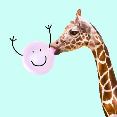 Edgee agence événementielle évènements Paris girafe-chewing gum Edgee