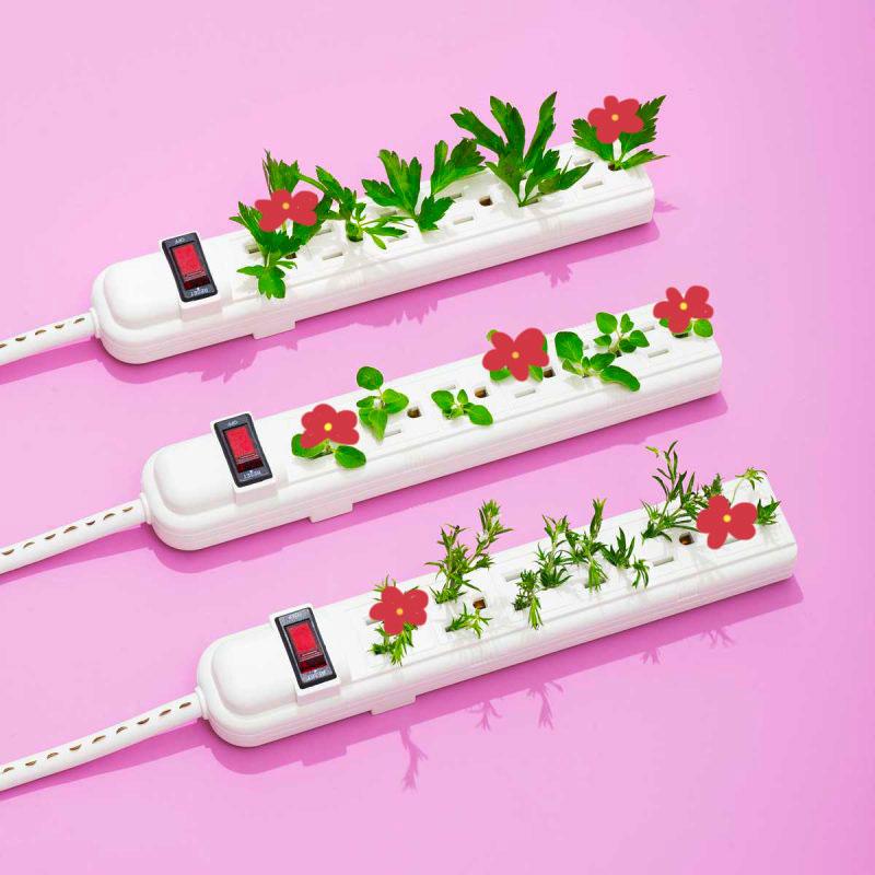 Edgee agence événementielle évènements Paris prises-electriques-fleurs Edgee